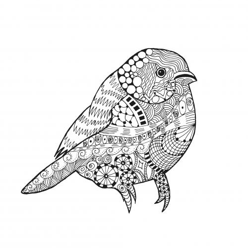 Coloring Stress Relief Bird