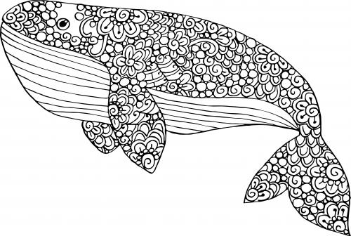 blue whale coloring page kidspressmagazine com