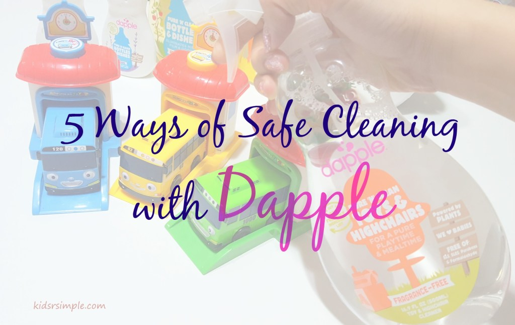 5 Ways of Safe Cleaning with Dapple