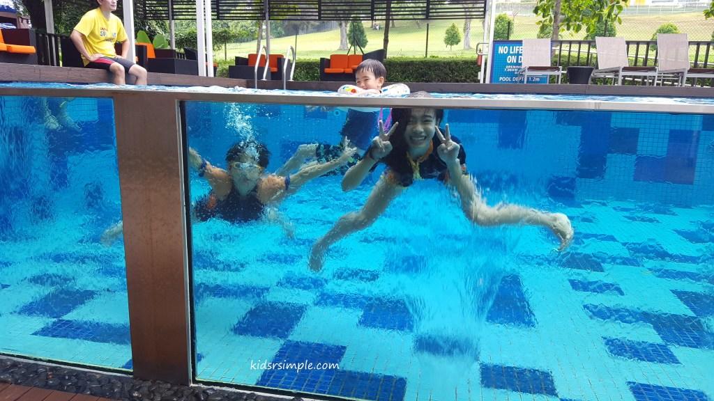 Level 1 Swimming Pool glass