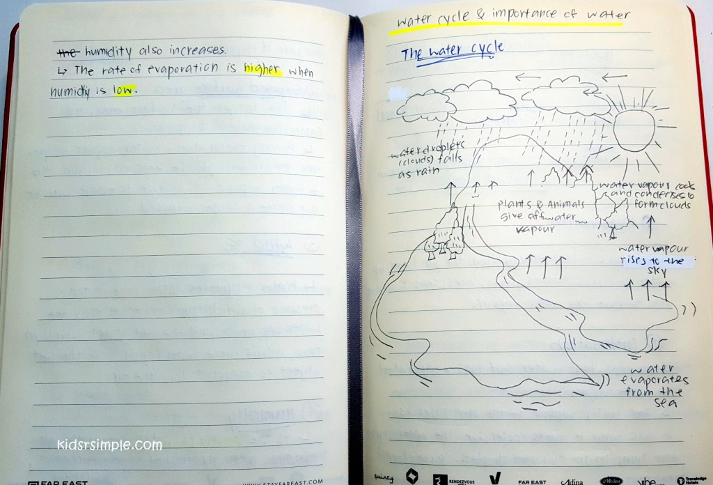 Missy's Science Journal after Mr Chee's workshop