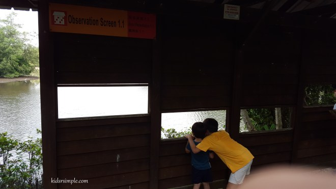 Bird Observation Hide