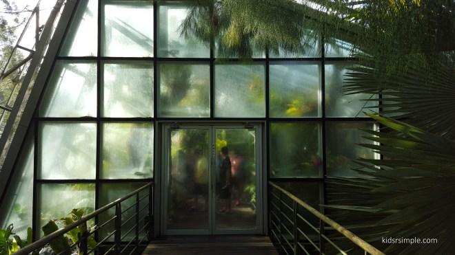 Cool house entrance