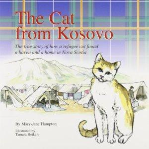 Cat-from-Kosovo-0
