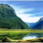 Top 7 Reasons to Visit New Zealand With Your Family