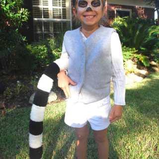 Lemur dress-up- Kid World Citizen