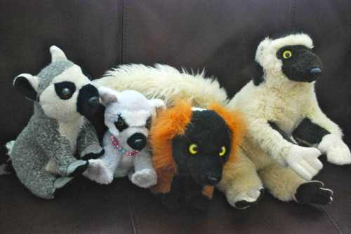 Lemur Stuffed Animals- Kid World Citizen
