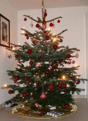 Christmas Tree Germany- Kid World Citizen