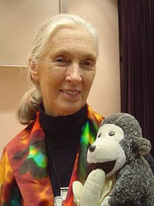 Jane Goodall Creative Commons- Kid World Citizen
