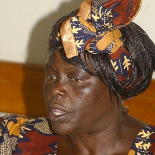 "Introduce Kids to Nobel Peace Prize Winner Wangari Maathai: ""Mama Miti"""