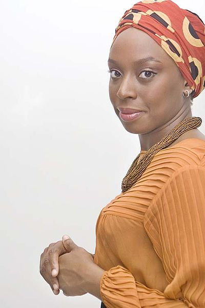 Chimamanda Adichie The Danger Of A Single Story Essay Format - image 7