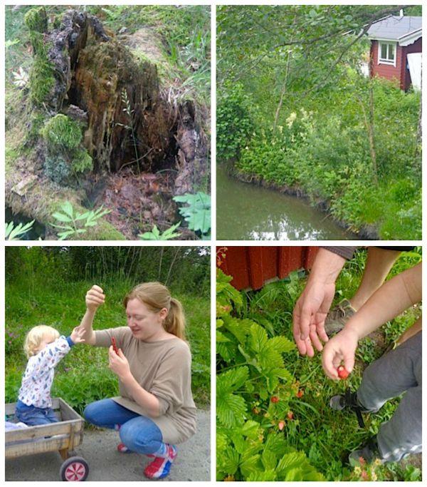 Swedish Countryside- Kid World Citizen