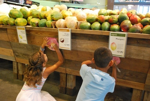 Where Our Food is From- Kid World Citizen
