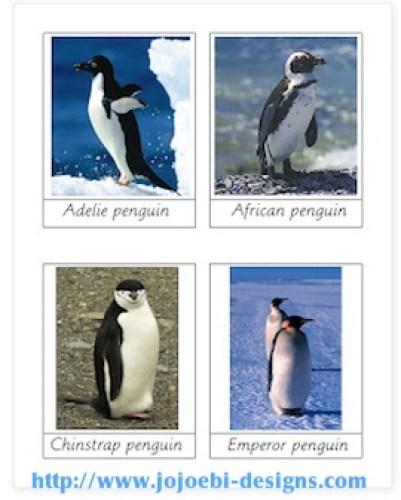 Penguin Activity Cards Kids- Kid World Citizen