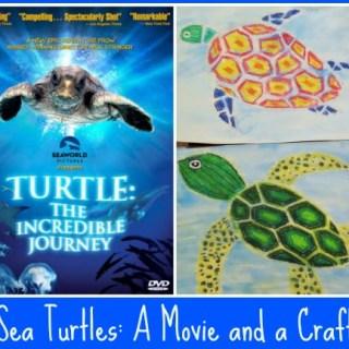 Sea Turtles: A Movie, A Craft, Books