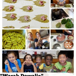 Warak Dawalie Palestinian Stuffed Grape Leaves- Kid World Citizen