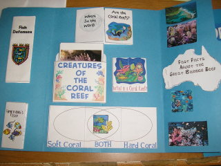 Coral Reefs Lesson Plan- Kid World Citizen