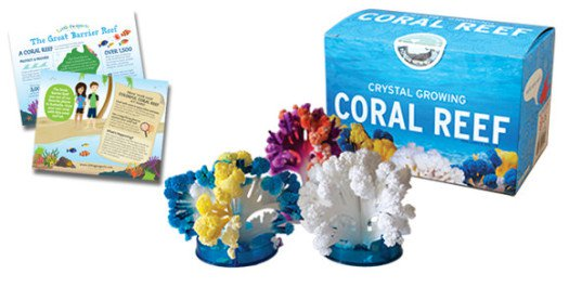 Little Passports Coral Reefs Kit- Kid World Citizen