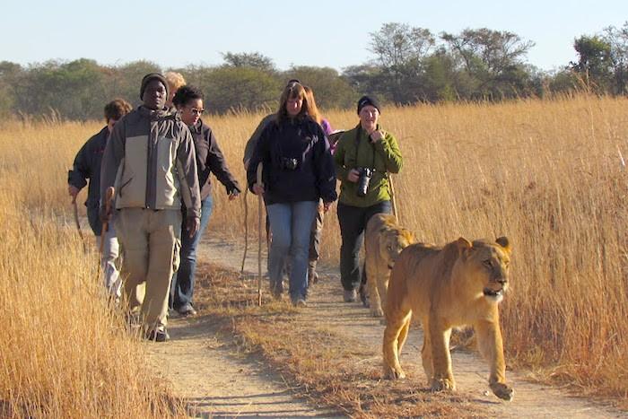 Southern Africa Teacher Travel GEEO- Kid World CItizen