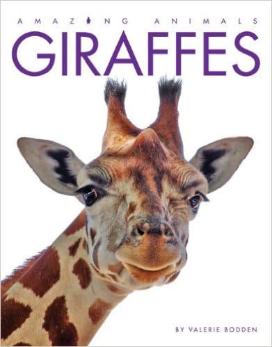 Amazing Animals Giraffes- Kid World Citizen