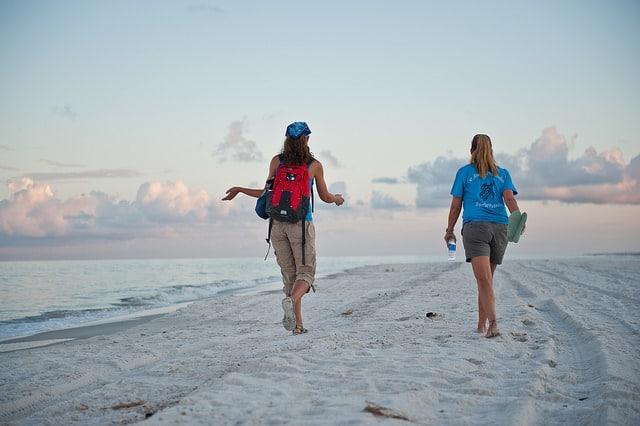 Turtle Walk Gulf County Florida- Kid World Citizen