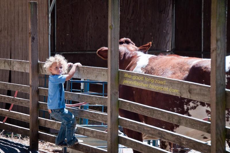 San Francisco with kids Little Farm Tilden Regional Park0 Kid World CItizen