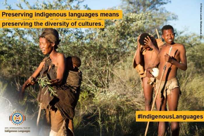 Preserving Indigenous Languages
