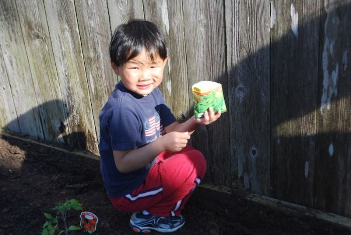 Planting Chinese Vegetable Garden- Kid World Citizen