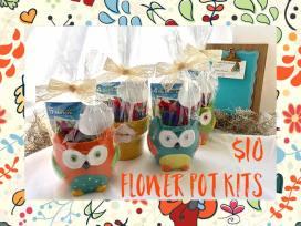 flower pot - owl