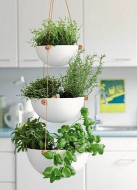 17 Easy DIY Indoor Plant Wall Decoration For Your Home Greenery 16
