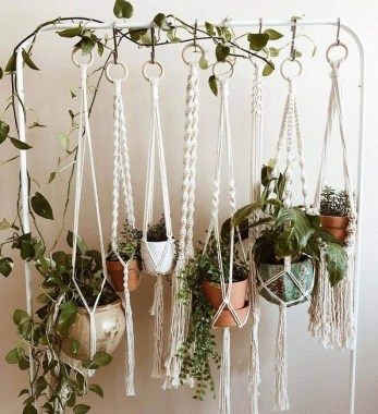 19 DIY Pretty Decorative Plants For Your Fresh Decoration 26
