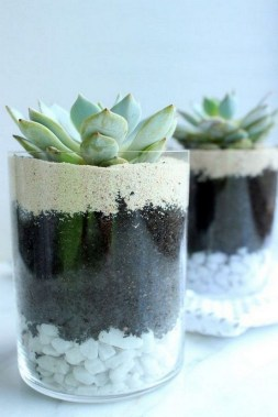 22 Beautiful And Incredible Fall Succulent Ideas 14