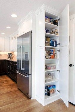 23 Kitchen Pantry Ideas With Form And Function 08