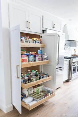 23 Kitchen Pantry Ideas With Form And Function 21