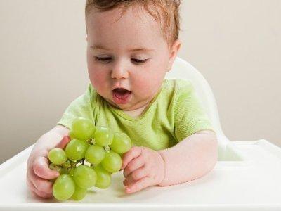 فوائد العنب للأطفال والكبار, متي يأكل الرضع العنب؟