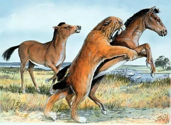 Ancient horses what do sabe tooth tiger eat