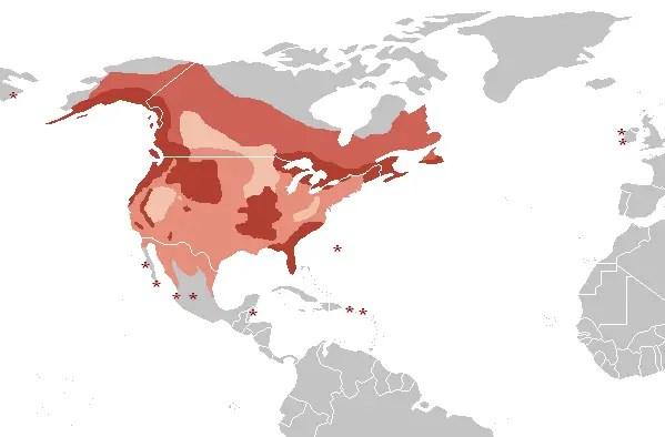 bald eagle habitat map