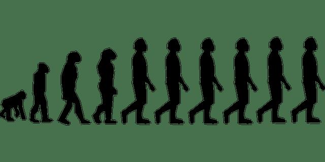 Charles Darwin Theory Of Evolution