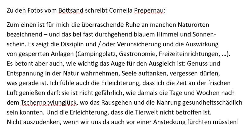Text zu Bottsand Watt von Cornelia Prepernau, April 2020.