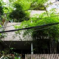 Bamboo House | Nhà ở Quận 1, Sài Gòn - VTN Architects
