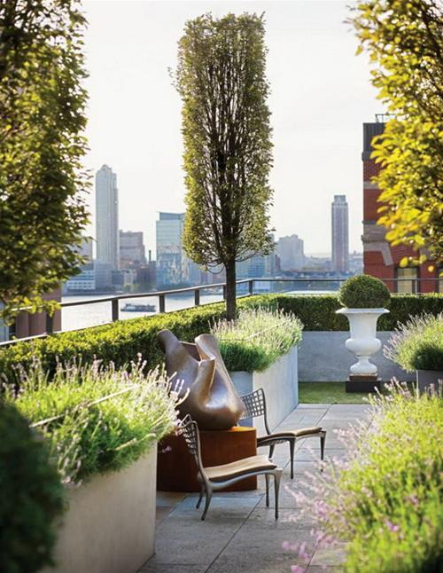 Gợi ý cách thiết kế vườn đẹp cho sân thượng