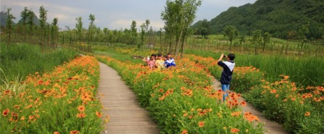 Minghu-Wetland-Park-by-Turenscape-14