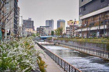Surrounding Tokyo sky-tree.