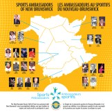 Sports Ambassador Teachers Poster