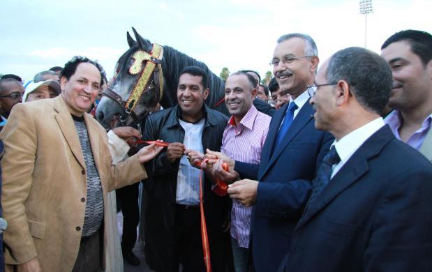 سطات.. حصان هدية للطاوسي (صور)