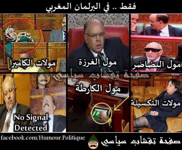 البرلمان المغربي.. برلمان مول…