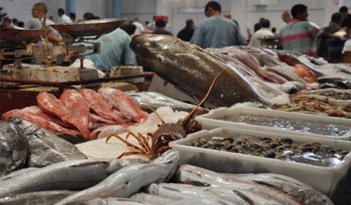 يناير 2016.. انخفاض في أثمنة الخضر واللحوم وارتفاع في أسعار السمك والبيض والقطارات والكهرباء