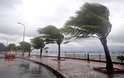 نشرة إنذارية.. أمطار وعواصف