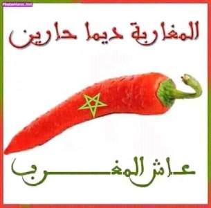 FB_IMG_1517779139226