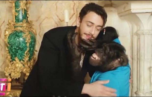 الكلمات والألحان وفكرة الكليب وحتى القرد.. سعد المجرد كينقل؟؟